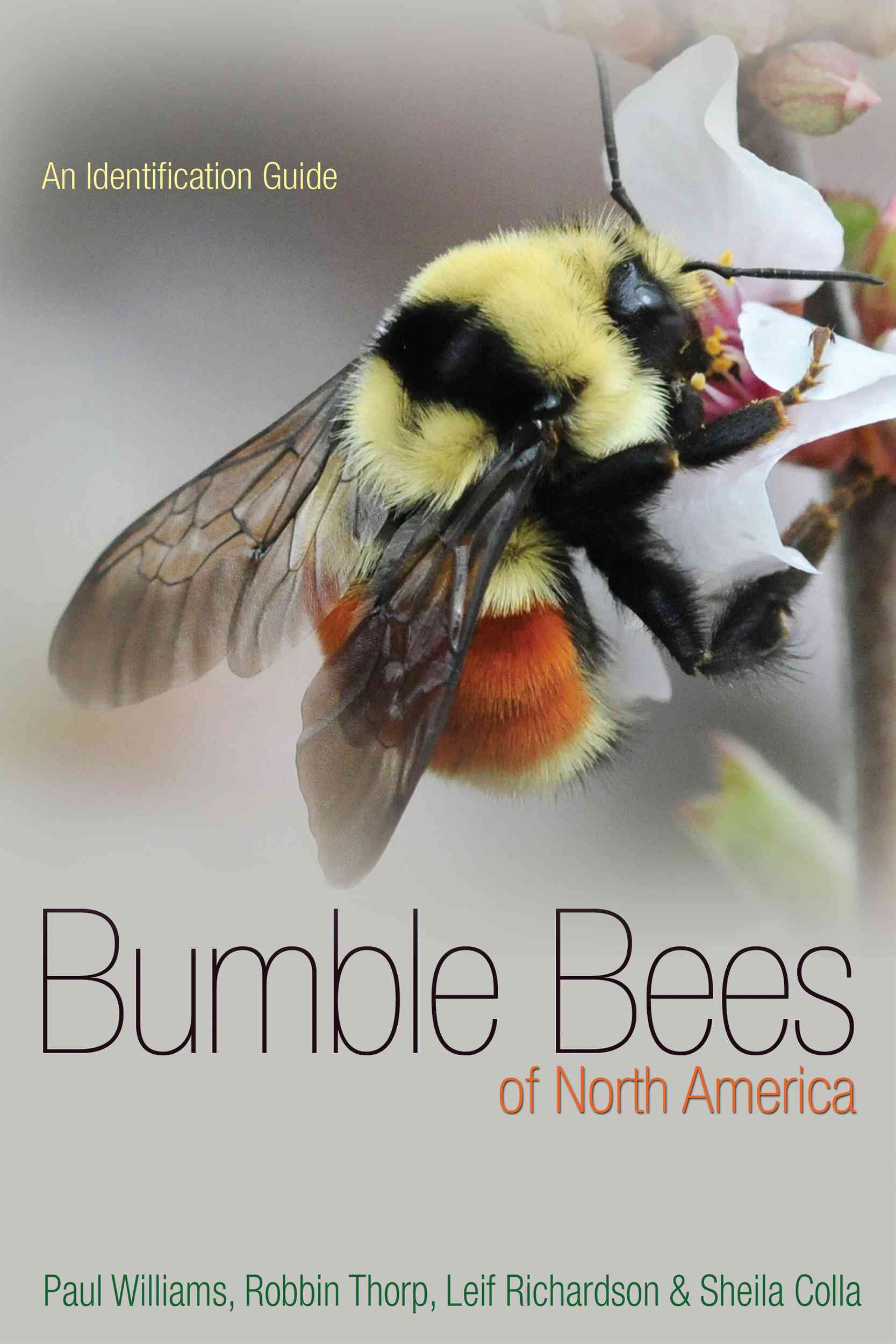 Bumble Bees of North America By Williams, Paul H./ Thorp, Robbin W./ Richardson, Leif L./ Colla, Sheila R.